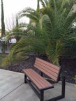 'Oasis of Rocklin' at Heaven's Garden I