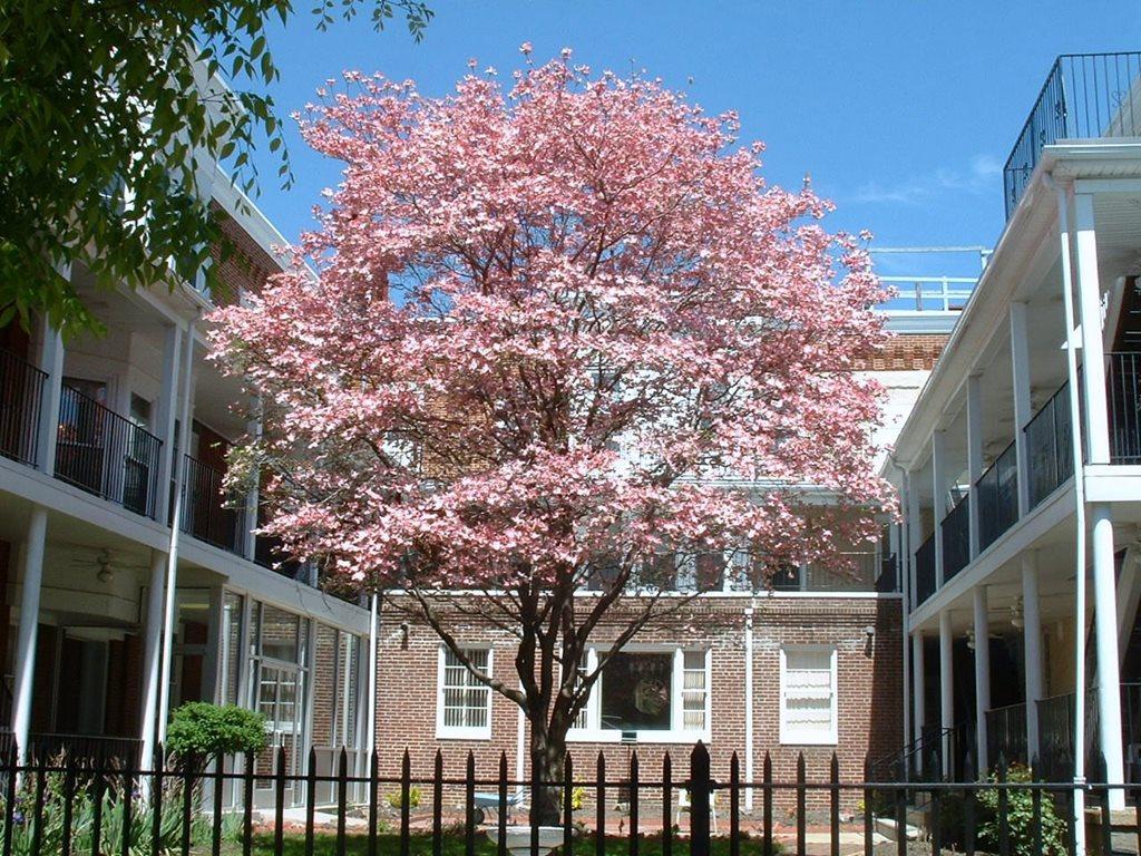Penn Home