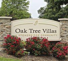 Oak Tree - ALF