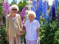 Assurety Senior Care